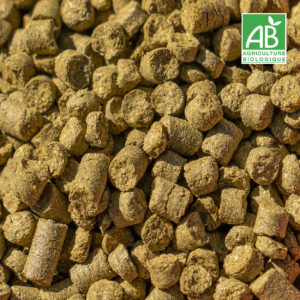Houblons BIO - 50 g (25 variétés)